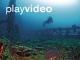 Unterwasserwelt Busuanga