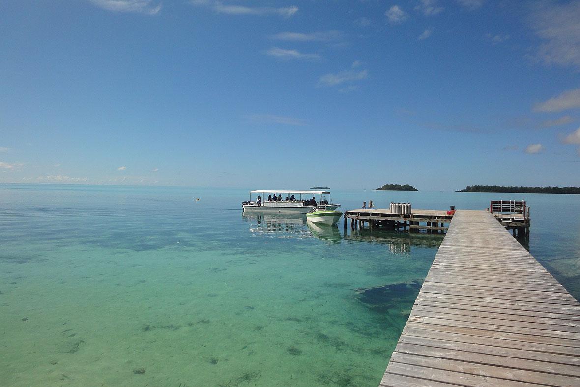 Palau Diving Center / Carp Island