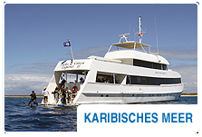 Tauchsafaris - Karibisches Meer