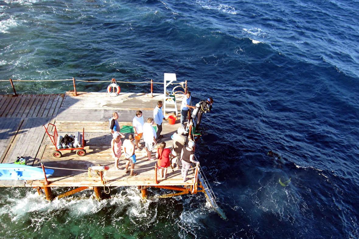 diving el FLAMENCO