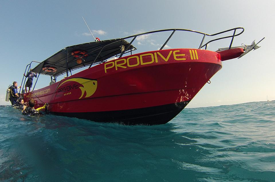 Pro Dive at Catalonia Riviera Maya