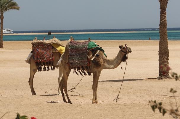 Ägypten - Tauchurlaub mit Flair