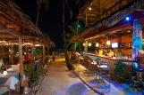 Bohol - Oasis Resort, Bar