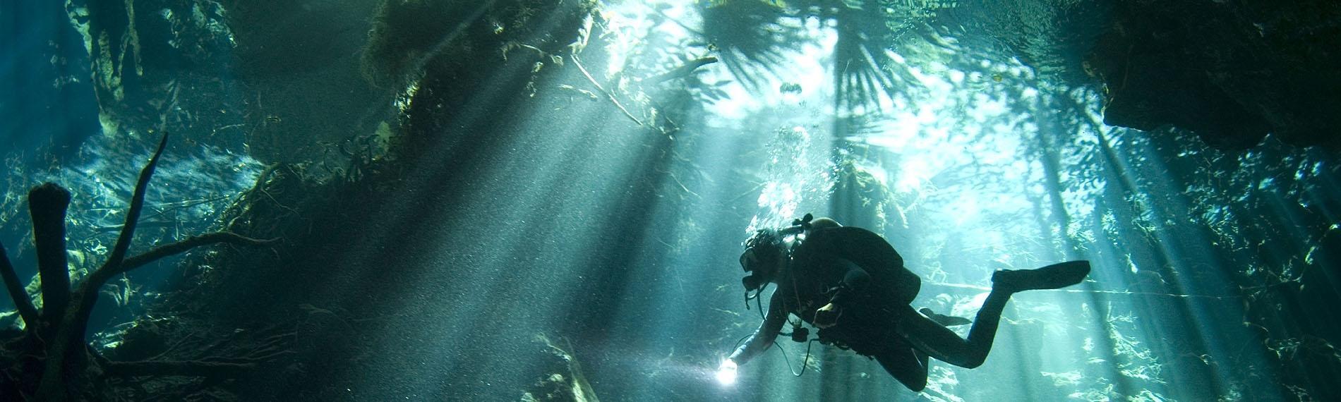 © Pro Dive