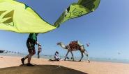 El Gouna, Kite-People, Strand mit Kite und Kamel
