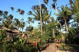 Jericoacoara - Vila Kalango, Gartenanlage