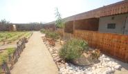Hamata Kite-Village-Camp, Aussenbereich mit Gärten