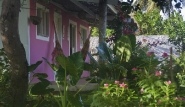 Sao Miguel do Gostoso Ilha do Vento Garten