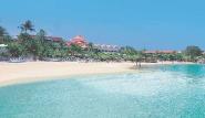 Tobago -  Coco Reef