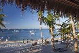 Malapascua  - Ocean Vida, Strand