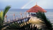 Cebu  Dolphin House