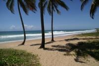 Bahiasurfcamp Salvador da Bahia
