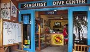Bohol - Seaquest Dive Center