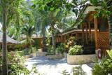 Cebu - Moalboal - Magic Island Dive Resort - Cottages