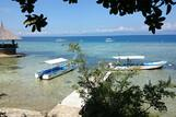 Cebu - Dolphin House, Dive College, Jetty