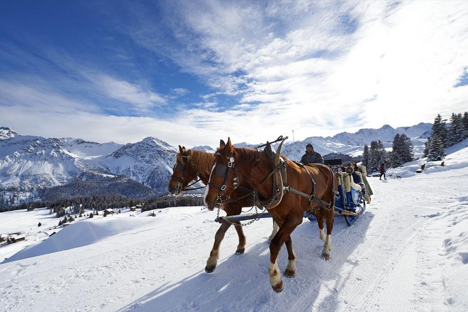Arosa - Pferdeschlittenfahrt ©Arosa Tourismus Nina Mattli