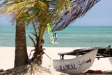 Tobago - Radical Sports, Windsurf Spot