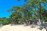 Lembeh - White Sands Beach Resort,  Strand