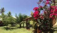 SurfBrasilien Garden 2