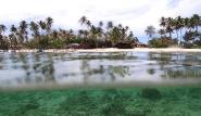 Kalimantan -  Derawan Dive Lodge