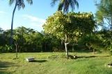 Icaraizinho - Casa Zulu, Garten