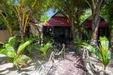 Nicaragua - Little Corn Island - Beach and Bungalow - Bungalow
