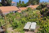 Madeira - Manta Diving Appartements - Garten