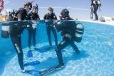 Madeira - Manta Diving - Kurs im Pool