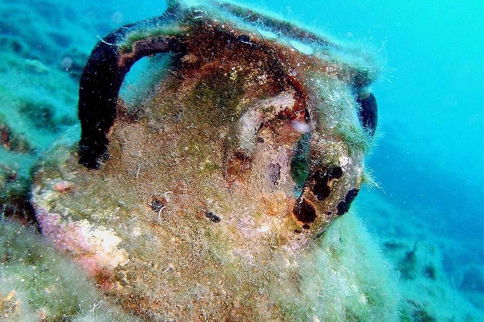 Türkei Unterwasserwelt