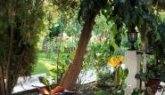 Lefkada - Villa Angela, Gartenblick