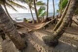 Nicaragua - Little Corn Island - Beach and Bungalow - Palmenwald