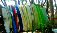 Cabarete Surfboards 1