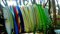 Cabarete Surfboards 1