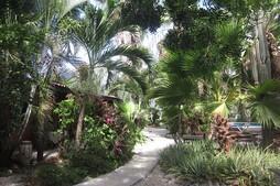 Tropical Inn Bonaire