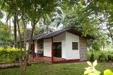 Mindoro - Apo Reef, Gartenzimmer