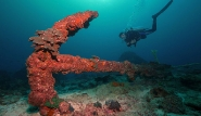 Mirbat Unterwasserimpressionen ©  ExtraDivers,  Barney