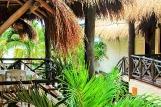 Playa del Carmen -  Mimi del Mar