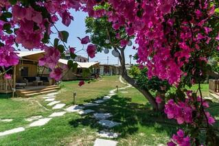 Rhodos Theologos - 'LOGOS Beach Village, Gartenanlage