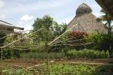 Tobago - Kariwak Village, Kräutergarten Garden Cabanas