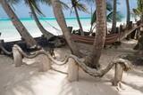 Nicaragua - Little Corn Island - Beach and Bungalow - Strandbereich