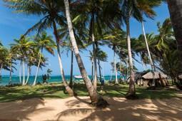 Beach and Bungalow Resort