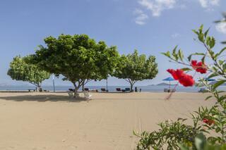Flores Puri Sari Beach Hotel, Strand