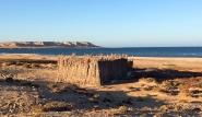 Dakhla Süd - Heliophora, Strand mit Materiallagerung