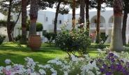 Kos - Marmari - Palladium, Garten