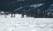 Skisafari, Berner Oberland