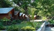 Peleliu - Dolphin Bay Resort,  Bungalowreihe