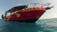 Puerto Aventuras - Pro Dive at Catalonia Riviera Maya, Boot